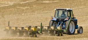 seeding-crops